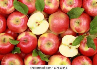 Group of red apples with their leaves