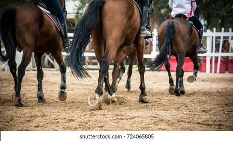 group of riders riding trotting horses on blur background