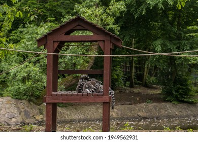 Group of ring-tailed lemurs huddle together in their wooden house at the zoo.