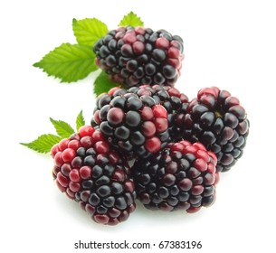 Group ripe blackberry on white background
