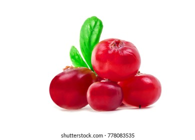 group of ripe forest red cranberries on white background