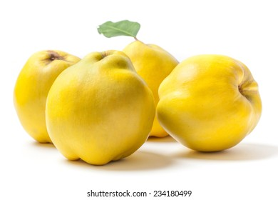 Group of ripe yellow quinces isolated on white background.