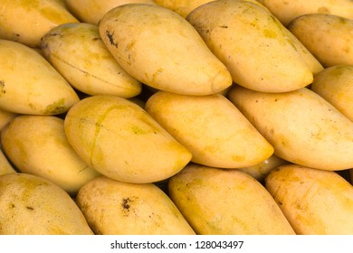 Group of ripe yellow raw mango for Background