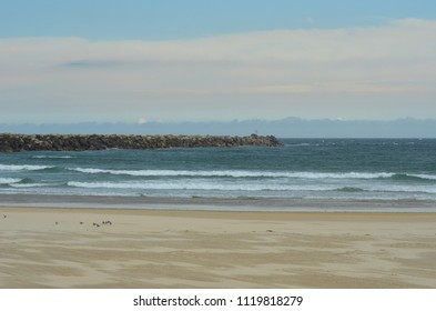 A group of seagulls on a deserted beach. Some waves are breaking. A bank of clouds are on the horizon.