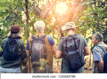 Group of senior adults trekking in the forest