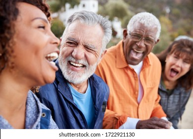 Group Of Senior Friends On Hike In Countryside Talking And Laughing Together