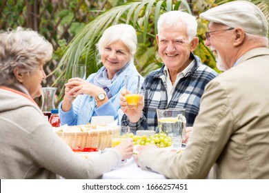 Group of senior people having dinner with friends in the garden
