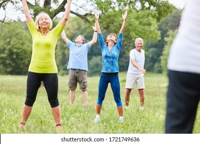 Group of seniors exercises fitness in a gym or yoga class in the park