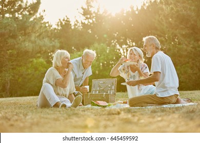Group of seniors in the park in a picnic in summer having fun