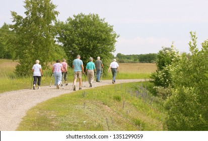 Group of seniors people walking in the forest. Nordic walking - with the aid of long poles resembling ski poles.