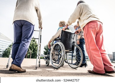 Group of seniors walking in the park