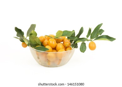 A group of small kumquats or cumquats or fortunella, isolated over white background