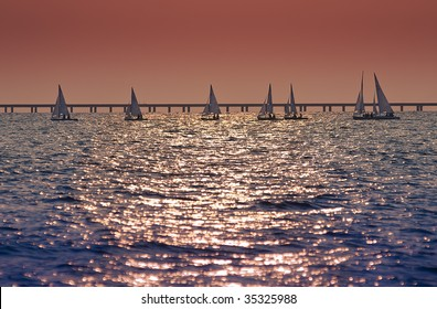 A group of small sailboats in regatta during warm late afternoon sunset.