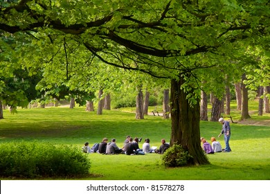 Group of students studying in a park.