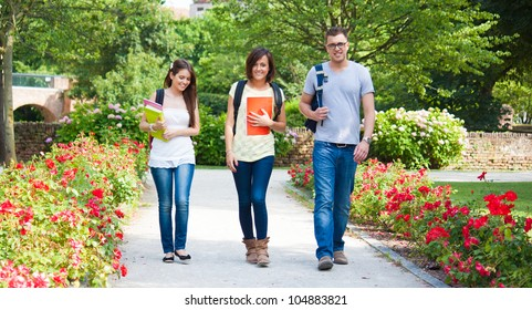 Group of students walking outdoors