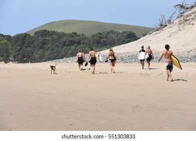 A group of surfers walking on the beach in Coffee Bay at the Indian Ocean in the Eastern Cape at the Wild Coast of South Africa carrying surfboards and a dog walking with the group