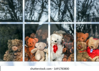 Group of  teddy bears sitting in a window set up for a bear hunt