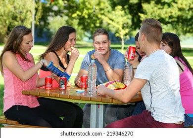 Group of teenage eating in a park