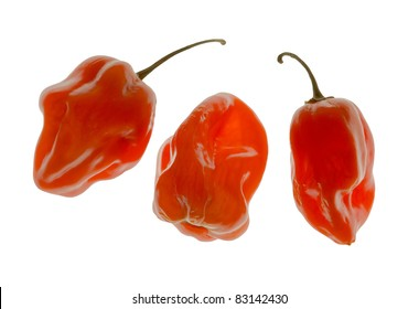 Group of three habanero peppers isolated on white background