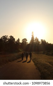 A group of three people walk on a path towards the setting spring sun, disappearing over the forested horizon.