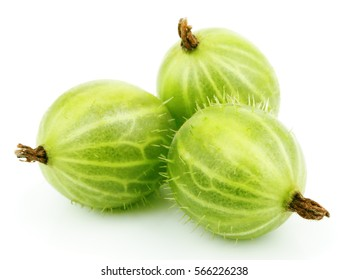Group of three ripe green gooseberry berry. Green gooseberry isolated on white background