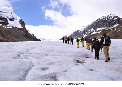 Group of tourist doing glacier walk at Athabasca Glacier,  Columbia Icefield, Canadian Rockies.