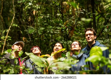 Group Of Tourists In Ecuadorian Jungle Looking For Animal In Cuyabeno Wildlife Reserve Sucumbios Ecuador