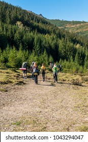 a group of tourists enter the dense forest, and continue moving to the mountains
