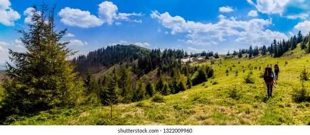 group of tourists hiking in carpathian mountains to the Parashka mountain, national park Skolevski beskidy, Lviv region of Western Ukraine