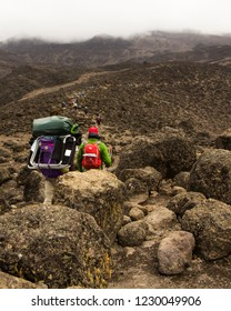 A group of tourists leads the way to the top of Kilimanjaro on the Machame Route