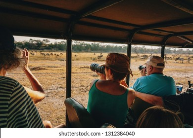 Group of tourists taking pictures of African wildlife during a game drive at sunset, Makgadikgadi Pans National Park, Botswana