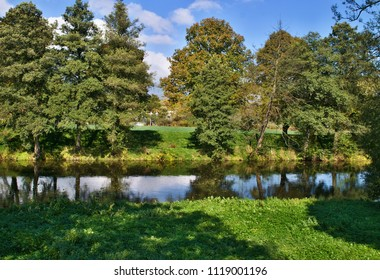 Group of trees by the river with lawn in the foreground