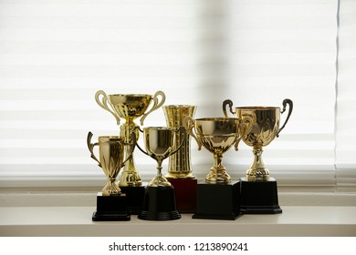 group of trophy by the window