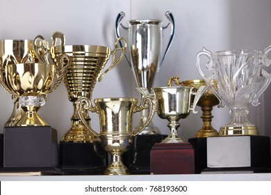 group of trophy displayed on the shelf