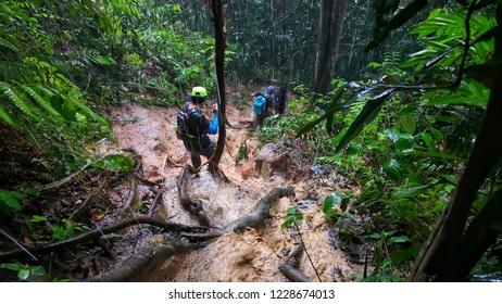 A group of unidentified hikers descending mountain jungle in heavy rain