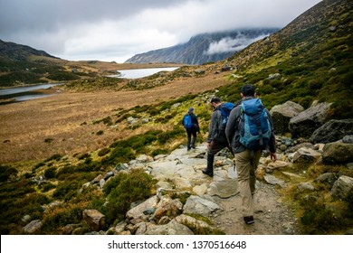 Group of unknown hikers climbing a mountain in green weather of winter in the morning, A group of mountaineers climbing mountain in beautiful nature landscape, sport activity