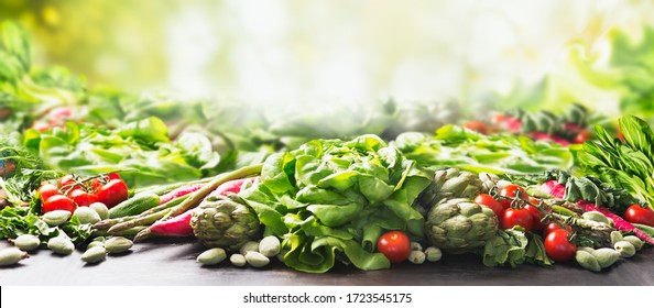 Group of various harvesting organic vegetables at sunny summer  garden green nature background. Veggies growing. Eco food.  Tomato, lettuce, root vegetables,artichokes, asparagus,herbs,carrots. Banner