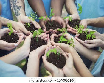 Group of volunteer with sprout for growing, ecology concept, copy space