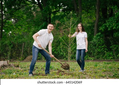 Group of volunteer with trees for growing