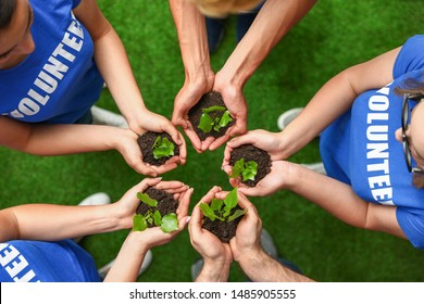Group of volunteers holding soil with sprouts in hands outdoors, top view