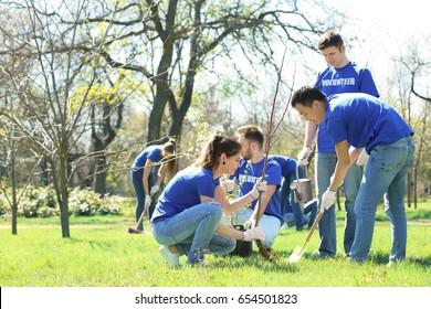 Group of volunteers working in park