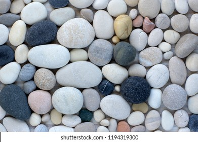 Group of white, grey and black pebbles, one by ony, simplicity stone background, flat lay texture in daylight