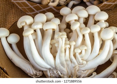 A group of white hon shimeji mushrooms are on display at a vegetable market.