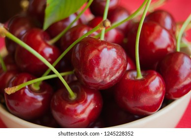 Group of whole and freshly cherries picked from the tree