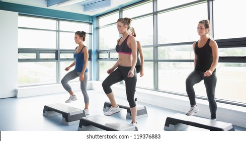 Group of women doing aerobics in gym
