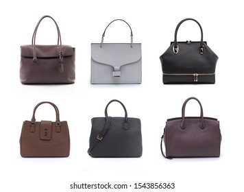 group of women leather handbags isolated on white background