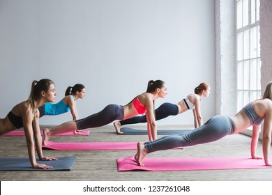 Group women on floor of sports gym doing push ups. Fitness club.