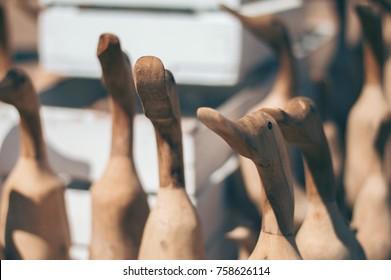 Group of Wooden Ducks