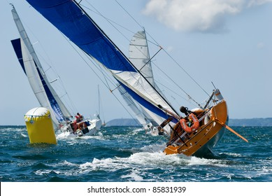 group of yacht at race regatta with skipper