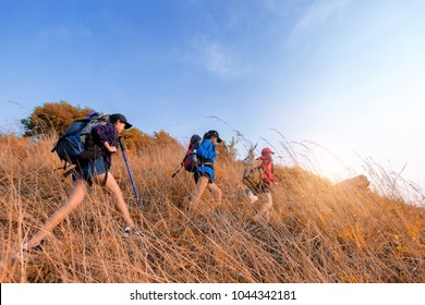 Group of young Asian woman travel hipster hiking on mountain holiday, wild adventure. Background for Travel concept .